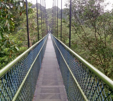 The Albany & Tree-top Walk Tour in Australia