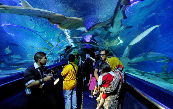 1462373429_1280px-underwater_tunnel_in_aquaria_klcc.jpg