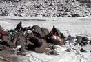 1461677968_frozen_river_chadar_trek_1_25.jpg