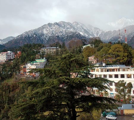 Mcleodganj and Dharamshala Full Day Sightseeing Trip in a Car