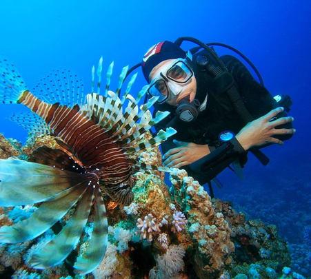 4 Hours Scuba Diving at Hikkaduwa in Sri Lanka