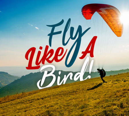 Bir Billing Paragliding and Trekking Adventure Activities