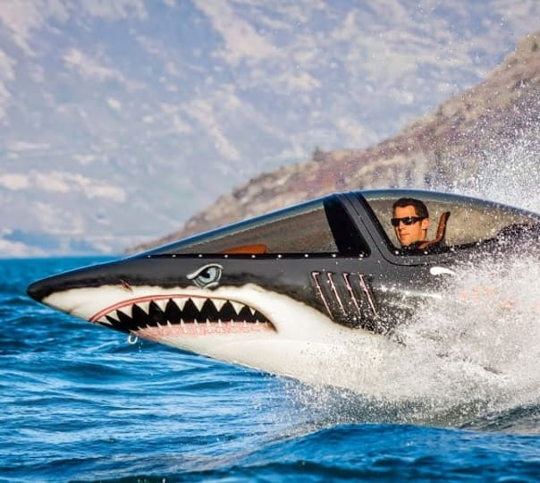 Mechanical Shark Ride in Queenstown