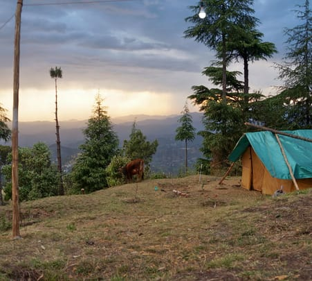Offbeat Camping Experience in Shimla