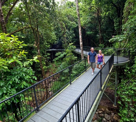 Day Tour to Daintree and Ngadiku