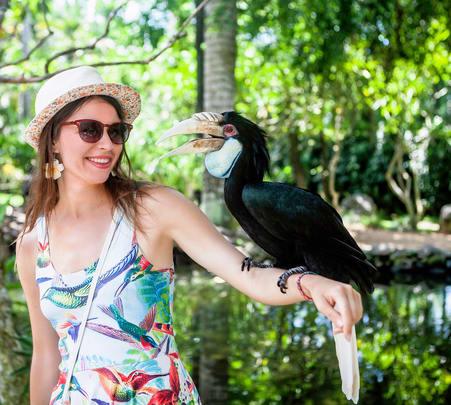 Bali Bird Park Admission Ticket- Flat 53% off