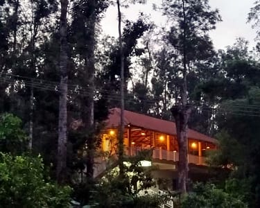 Nature Homestay into the Woods, Chikmagalur