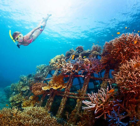 Speed Boat Tour and Snorkeling in South Bali
