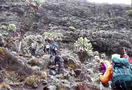 1461330308_kilimanjaro_trek_in_tanzania_479.jpg