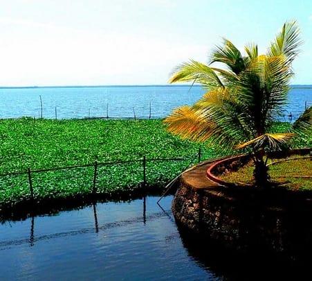 Kerala Sightseeing Tour