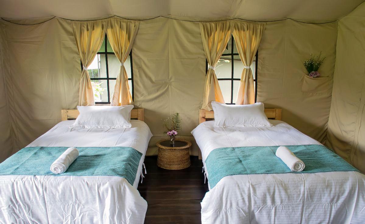 1586532413_cottage_tents4.jpg