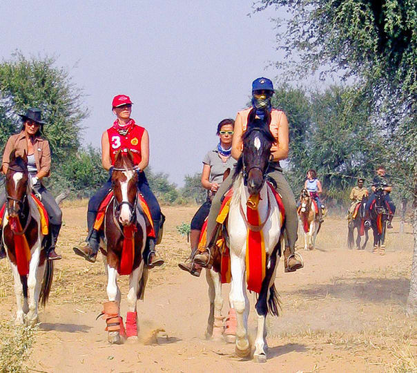 Short Horse Ride in Udaipur