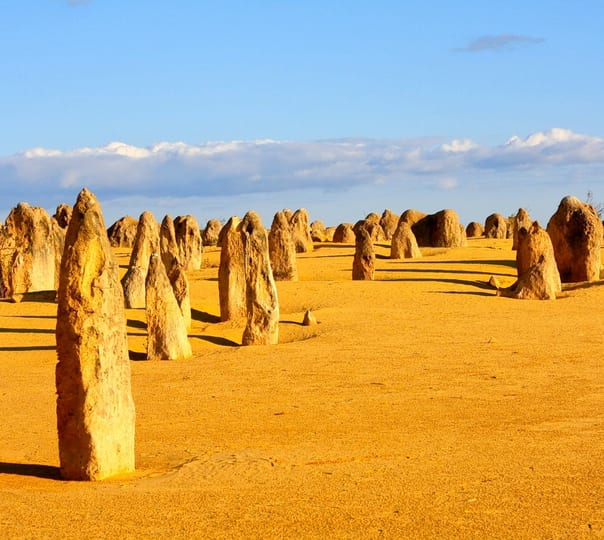 Pinnacles and National Park Tour in Perth