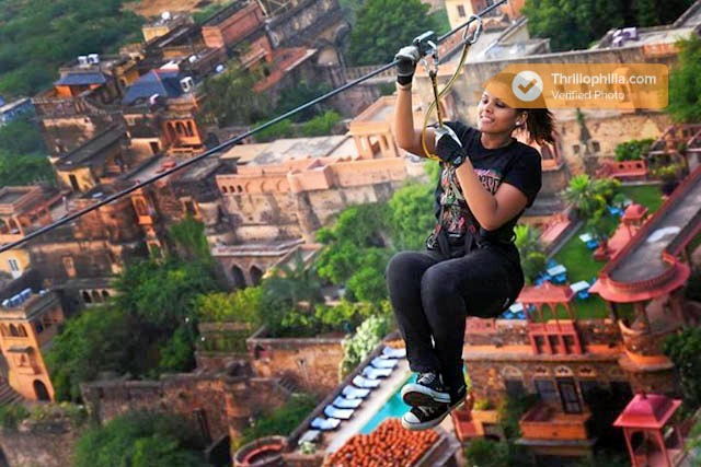 Neemrana_flying_fox_(7).jpg